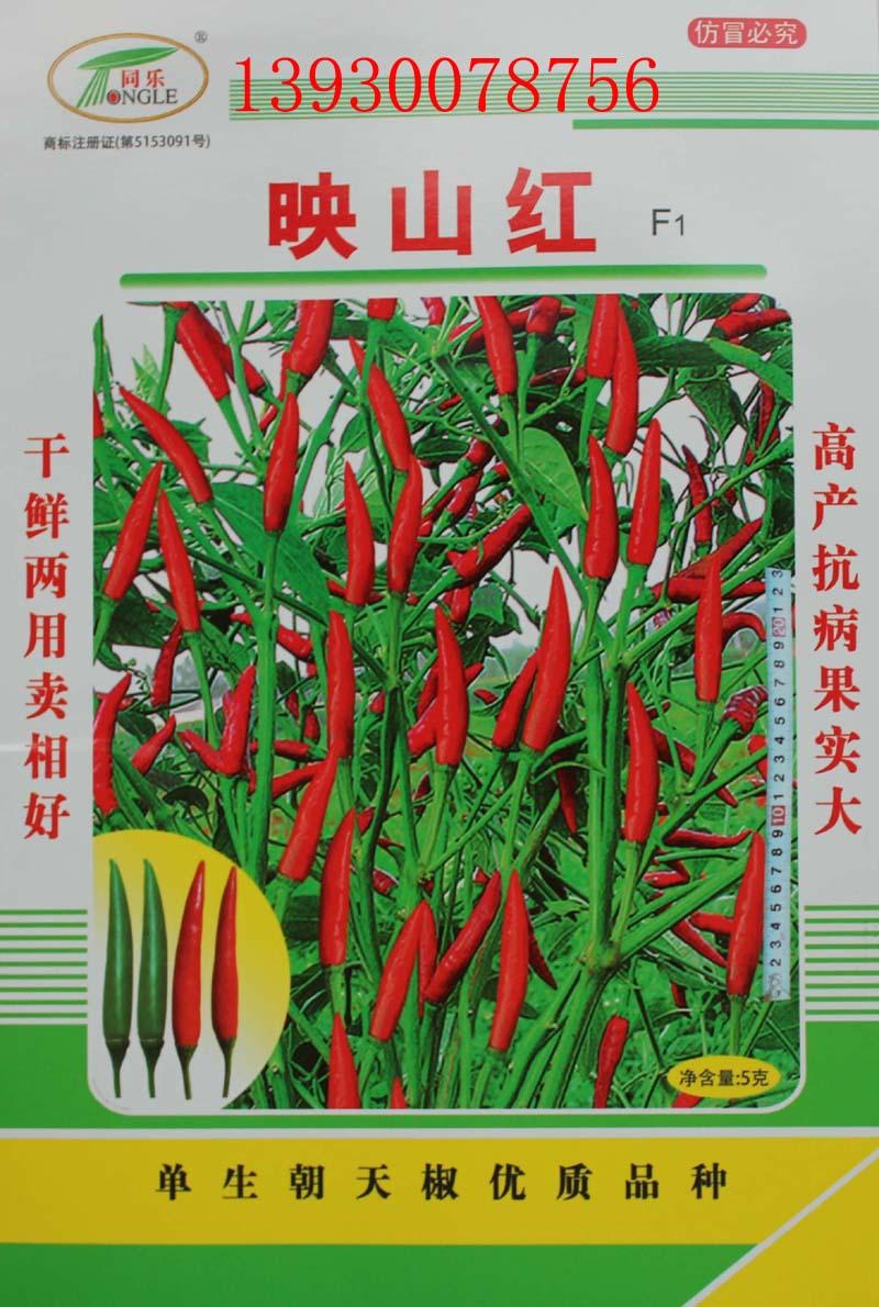 高产辣椒品种推介